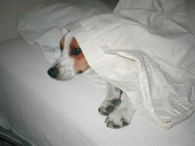 Patch under the covers