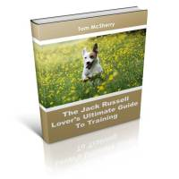 Jack Russell book cover
