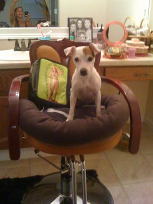 Madison in her Salon Chair