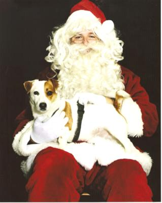 Jack Russell with Santa Claus