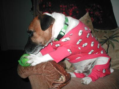 Elvis in his PJ,s