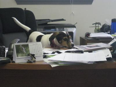 NEW OFFICE MANAGER