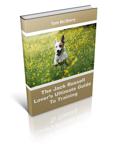 Jack Russell book