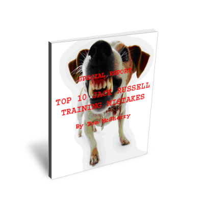 Free Jack Russell training ebook